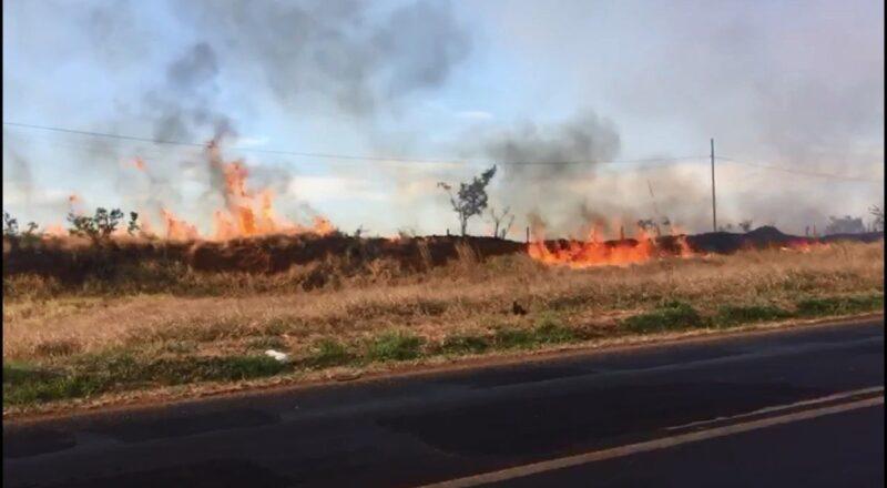 Bombeiros combatem importado focos de incêndio no arrondissement Industrial durante qual Uberlândia; veja vídeo | Triângulo Mineiro